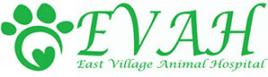 cropped-official_evah_logo-1-3